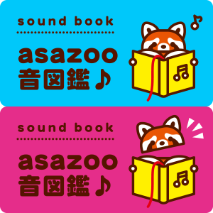 asazoo音図鑑♪