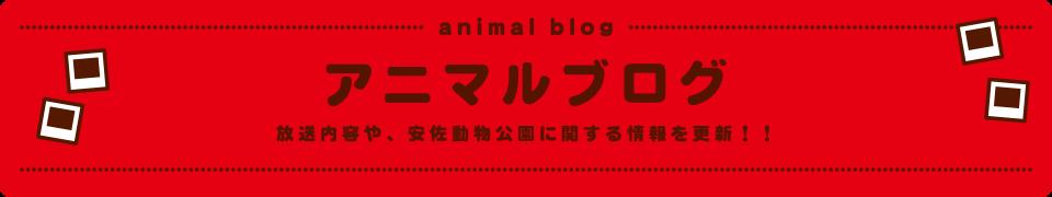 アニマルブログ-放送内容や、安佐動物園に関する情報を更新!!